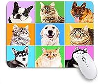 ECOMAOMI 可愛いマウスパッド 明るい背景の犬と猫の肖像画 滑り止めゴムバッキングマウスパッドノートブックコンピュータマウスマット
