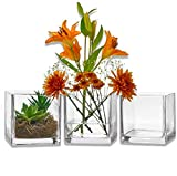 PARNOO Set of 3 Glass Square Vases 6 x 6 Inch – Clear Cube Shape Flower Vase, Candle Holders - Perfect as a...