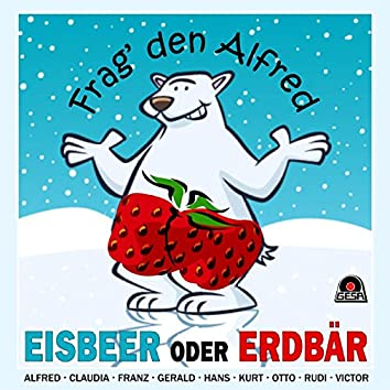 Eisbeer oder Erdbär - Frag' den Alfred