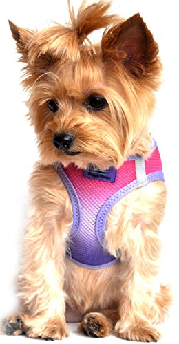 Doggie Design Ultra No-Choke Step In Reflective Dog Harness American River Ombre Raspberry Sundae All Sizes (XS)