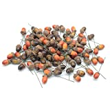 tyoungg 100pcs Artificial Acorn Picks Wired Acorns Nuts Brown Nutty Pine Cones for DIY Making Christmas Autumn Harvest Wreath Tree Home Decor Autumn