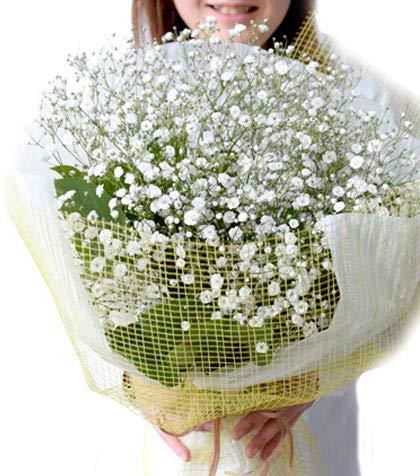 誕生日 バレンタイン ギフト にも ギフト 花 ギフト かすみ草 カスミソウとグリーン花束 ドライフラワーにも 送別 退職 母の日 送別 にも