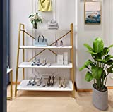 Floor-Standing Gold Clothing Rack with Shelves Metal Display Rack for Shoes Bag Jewelry Ha...