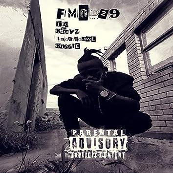 FMOD29