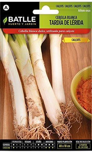 Semillas Hortícolas - Calçots - Cebolla blanca tardía de Lérida - Batlle