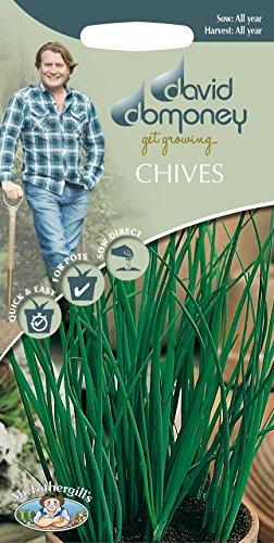 Mr Fothergills???herbes???David Domoney ciboulette???750?graines