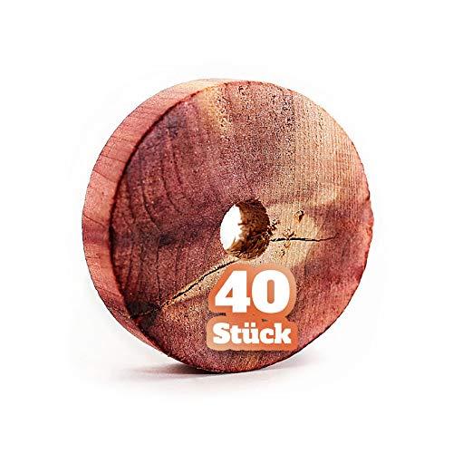 GARSA 40x Mottenschutz aus natürlichem Zedernholz, 100% Bio Mottenabwehr für Kleiderschrank, Chemiefreie Mottenfalle gegen Motten, Sofort Kleidermotten Lebensmittelmotten und Mehlmotten bekämpfen