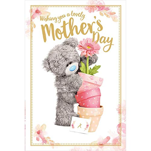 Me To You Bear Holding Flower Pots 3D Holographic Mother's Day Card