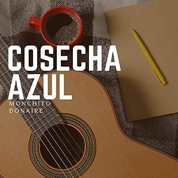 COSECHA AZUL