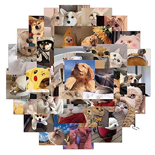 YMSD 48 unids lindo gato y perro emoticono bolsa ordenador teléfono móvil portátil taza de agua equipaje personalizado creativo impermeable pegatinas