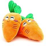 Healthy clubs - Juguete de Peluche con Sonido para Perros y Mascotas, diseño de Zanahoria, Carrot