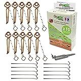 Elegardn Kit Completo 10 trampas para Topos topillos Ratas de jardín Ratones Tipo Putange rígido Utilizado por Profesionales Fabricado en Francia