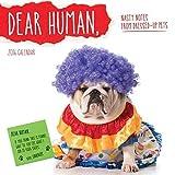 2016 Dear Human Wall Calendar: Nasty Notes from Upset Pets