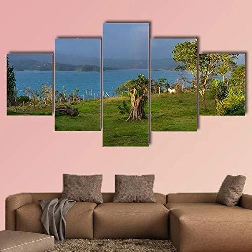 QQQAA Cuadro sobre Lienzo 5 Piezas Lago arenal en Costa Rica Material Tejido No Tejido Impresión Artística Imagen Gráfica Decoracion de Pared 150cmx80cm
