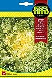 Semillas Fitó 106 - Semillas de Escarola Rizada Doble Verano Estival