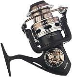 GJJSZ Carretes Carrete de Pesca Giratorio Carrete de Pesca en el mar Gris antirretroceso (Color:Gris,tamaño:6000)