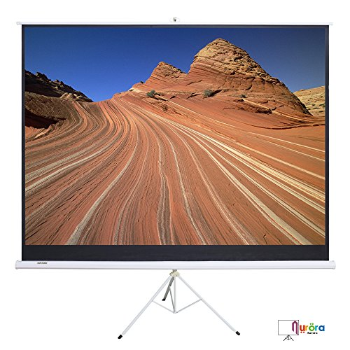 """SUNCOO 100"""" Portable Projector Screen,100 Inch Diagonal Projection HD 16:9 Projection Pull Up Foldable Stand Tripod"""
