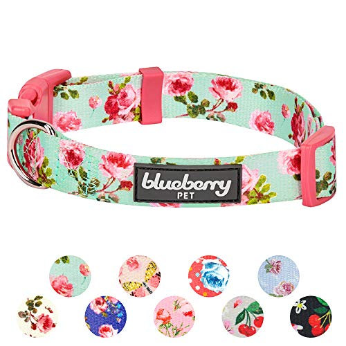 "Blueberry Pet 11 Patterns Spring Scent Inspired Floral Rose Print Turquoise Adjustable Dog Collar, Medium, Neck 14.5""-20"""