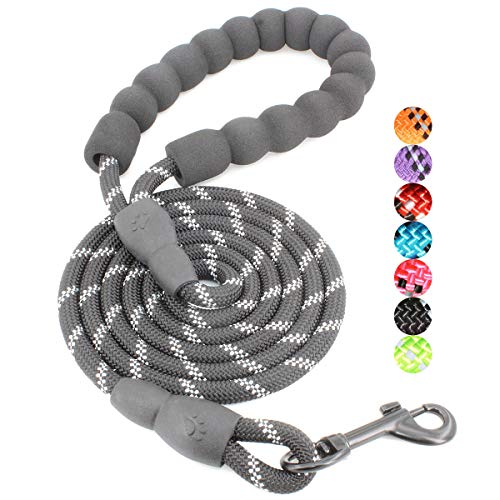 BAAPET 2/4/5/6 FT Strong Dog Leash with Comfortable Padded Handle and Highly Reflective Threads for Small Medium and Large Dogs (5FT-1/3'', Black)