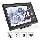 HUION Kamvas GT-191 Tablette Graphique avec Écran - Tablette graphique de 19,5...