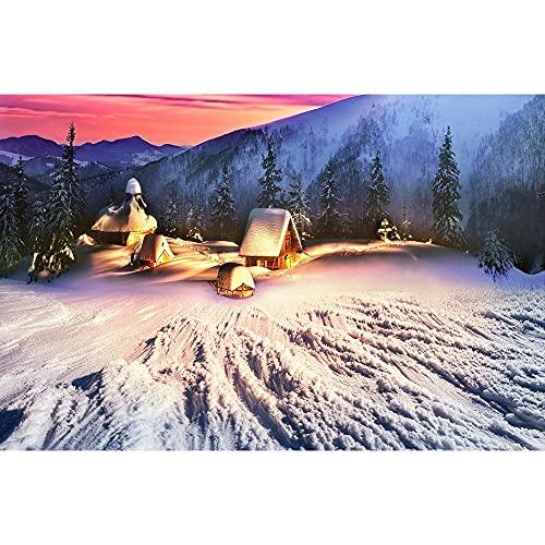 Accesorios de Fondo de fotografía Fondo de fotografía de Paisaje de Invierno Fondo de Estudio fotográfico de Vinilo Accesorios A10 10x7ft / 3x2.2m