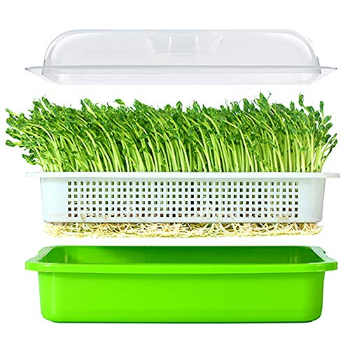 LeJoy Garden Seed Sprouter Tray BPA Free PP Soil-Free Big Capacity Healthy Wheatgrass Grower with Lid Sprouting Kit 13.4x9.84x4.72 inches(LxWxH)