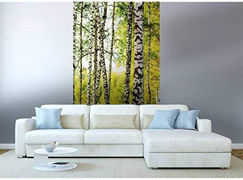 Vlies Fototapete BIRKENWALD 150 x 250 cm | Vliestapete - Wandtapete für Wohnzimmer Schlafzimmer Büro Flur | PREMIUM QUALITÄT - MADE IN EU - Inklusive Tapetenkleber
