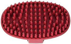 Best Brush For Short Hair Dogs Spanielking