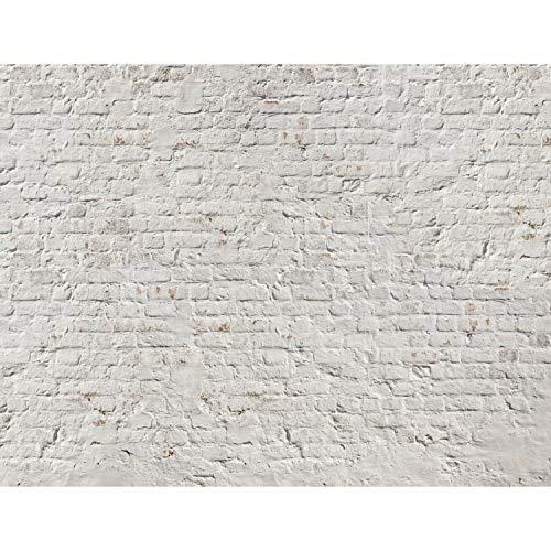 Fototapete Steinwand 396 x 280 cm - Vlies Wand Tapete Wohnzimmer Schlafzimmer Büro Flur Dekoration Wandbilder XXL Moderne Wanddeko - 100% MADE IN GERMANY - 9020012a