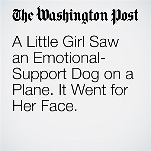 A Little Girl Saw an Emotional-Support Dog on a Plane. It Went for Her Face. copertina
