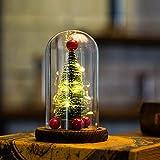 Hankyky Weihnachten LED Tischlampe Weihnachtsbaum Muster Glas in der Kuppel mit Holzsockel Nachtlichter Weihnachtsgeschenke Weihnachtsschmuck für Party Home Schlafzimmer Dekor