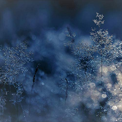 The Christmas All-Stars, Ultimate Christmas Songs & Magic Winter