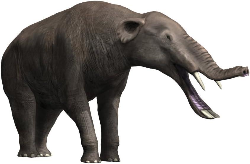 Amazon.com: Platybelodon grangeri is a large mammal from the Late Miocene  of Mongolia Poster Print by Nobumichi TamuraStocktrek Images (32 x 24):  Posters & Prints