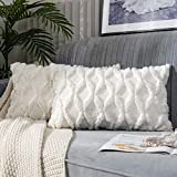 JUSPURBET Decorative Double Sided Plush Throw Pillow Covers,Pack of 2 Luxury Soft Cushion Case for Couch Sofa Bedroom,16x24 Inch,Cream
