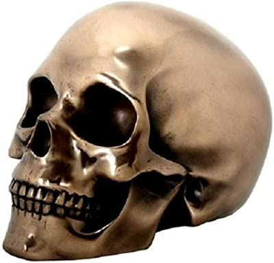 Amazon com: Gold Skull Head Collectible Skeleton Decoration Figurine