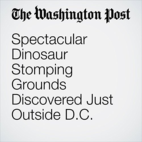 Spectacular Dinosaur Stomping Grounds Discovered Just Outside D.C. copertina
