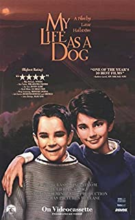 My Life as a Dog POSTER (11