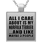 All I Care About Is My Norfolk Terrier - Square Necklace Collar, Colgante, Bañado en Plata - Regalo para Cumpleaños, Aniversario, Día de Navidad o Día de Acción de Gracias