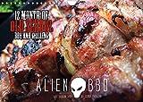 ALIEN-BBQ 2022 (Wandkalender 2022 DIN A4 quer)