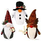 Juego de 3 figuras de enanos de Navidad sin cara con temática navideña, enanos suecos, adornos de Navidad, regalos de Acción de Gracias