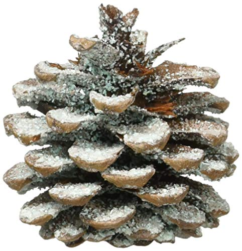 Find Bargain Plow & Hearth Fireplace Color Changing Pine Cones Wood Burning Accessories