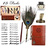Quill Pen and Ink Set, Antique Carving Calligraphy Feather Pen and Pens Stand Base, 10 Replacement Nibs and Leather Journal Notebook, Vintage Dip Pen for Gift Writing, Signature