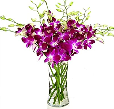 Fresh Cut Flowers -Dendrobium Purple Orchids with Vase from Eflowerwholesale