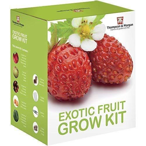 Thompson & Morgan Grow Kits Cadeau Boîtes - Exotique Fruitiers