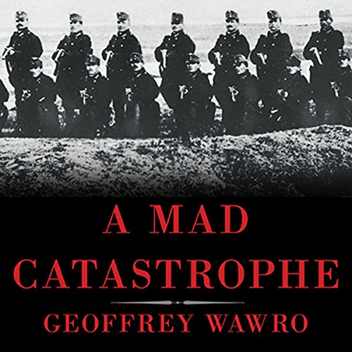 A Mad Catastrophe audiobook cover art
