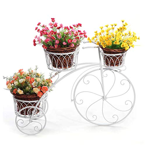 Tricycle Plant Stand Garden Shelves - Flower Pot Cart Holder - Decorative Bicycle Metal Plant Stand & Flower Pot Holder,Outdoor & Indoor Plant Holder | Great Gift for Plant Lovers