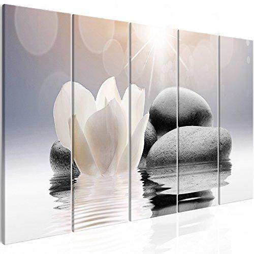 murando Cuadro en Lienzo Flores SPA 150x60 cm Impresión de 5 Piezas Material Tejido no Tejido Impresión Artística Imagen Gráfica Decoracion de Pared Oriente b-B-0268-b-m