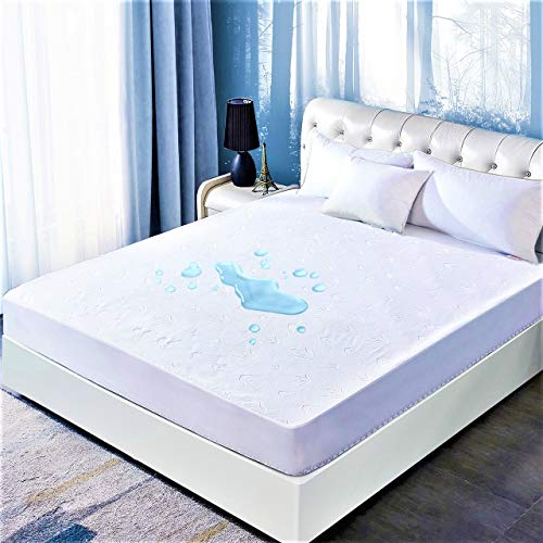 DOWNCOOL Queen Mattress Protector Cover, Ultra Soft Breathable Fitted Bamboo Mattress Protector (Queen, 60x80 inch)