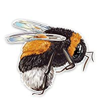 Maksim-003 素敵なぽっちゃり蜂の個性デカール車のステッカーPVC 14.9cmx12.4cm (Color : 1pcs)