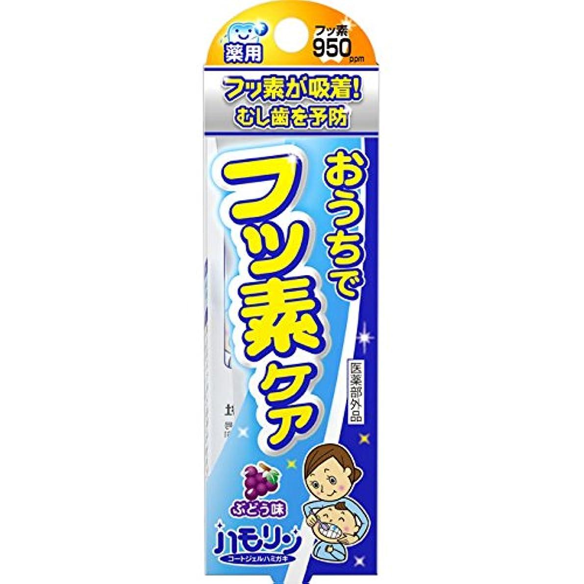 感情世辞キッチン丹平製薬 ハモリン ぶどう味 30g